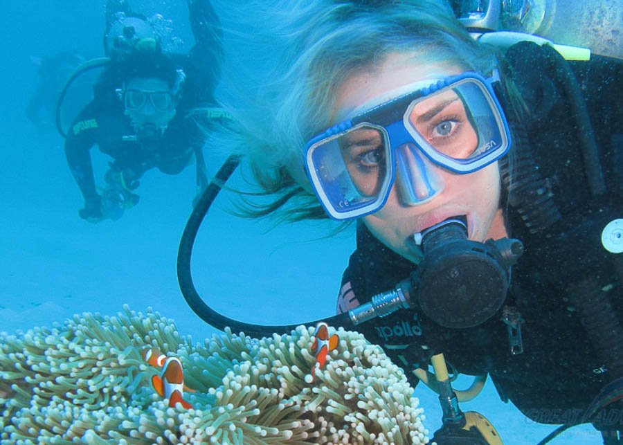 Great Barrier Reef & Green Island tours - Great Adventures