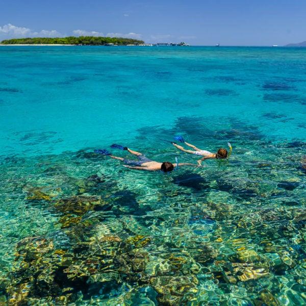 澳大利亞 凱恩斯 自由行:遊船之旅一日游