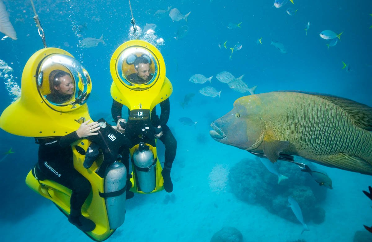 Experience The Great Barrier Reef Under Water On Scubadoo